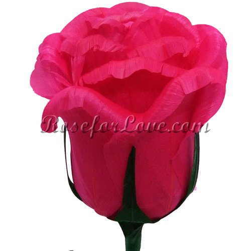 24 Half Blooming Bright Pink Feather Roses - Click Image to Close