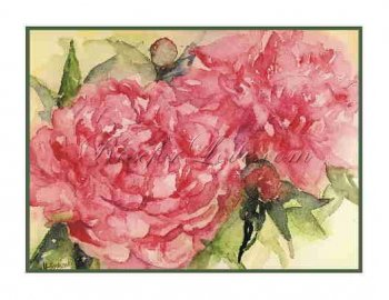 8 Watercolor Pink Peonies Greeting Note Cards