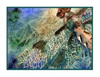 8 Watercolor Dragonfly Greeting Note Cards