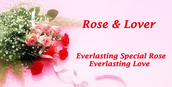 Everlasting Special Rose, Everlasting Love!